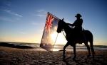 Australian Light Horseman & Brumby